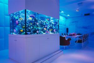 NYC Decorative Aquarium