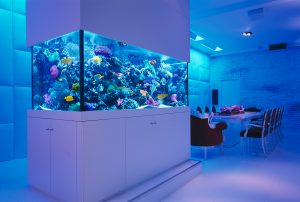Custom Aquariums - Okeanos Aquascaping