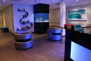 Decorative aquariums New York