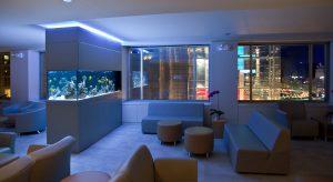 Custom Fish Tanks - Okeanos Aquascaping