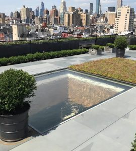 NYC custom skylight pond
