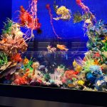 custom luxury aquariums