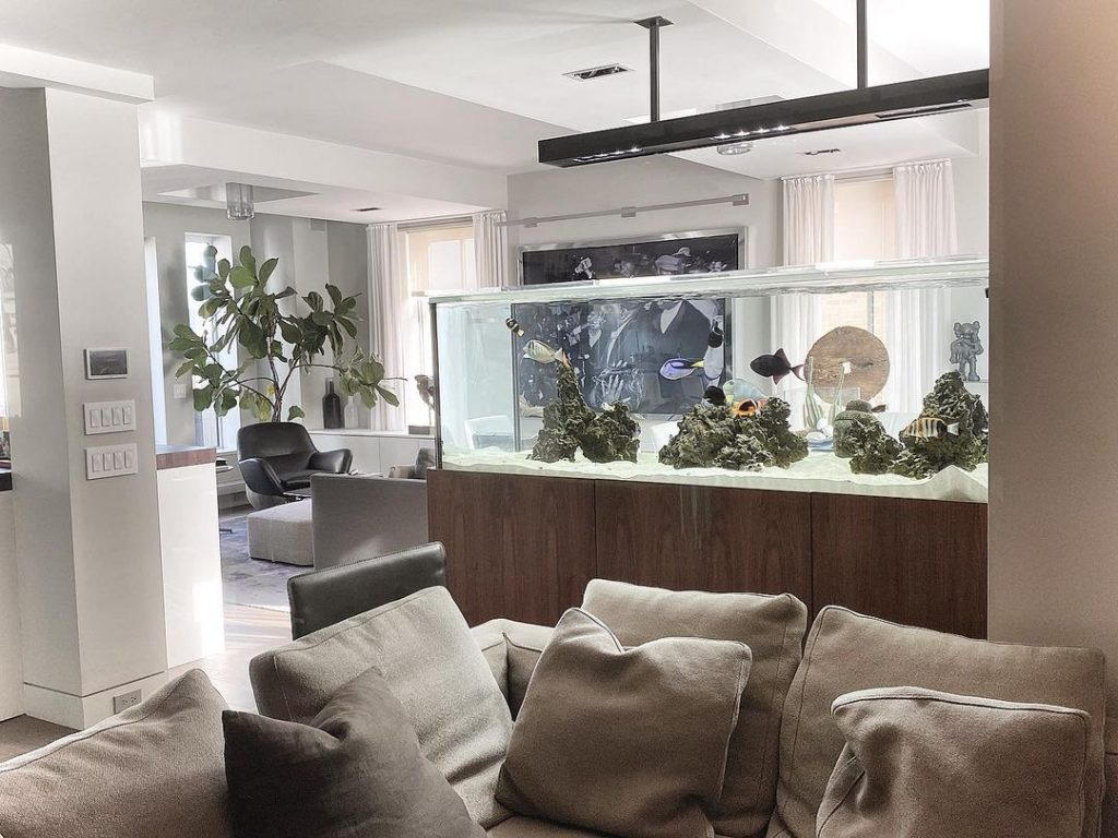 Aquarium Maintenance NYC