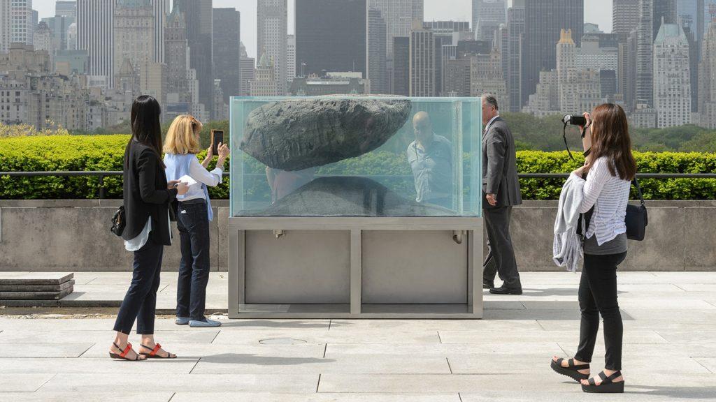 Designer of Museum Aquariums New York City