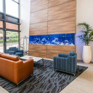 Saltwater aquariums for hotels