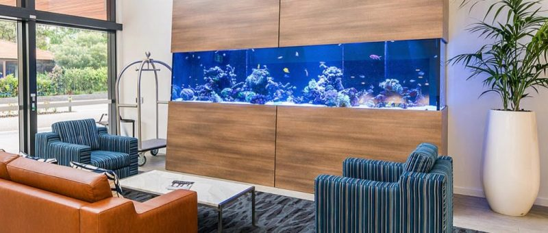 Saltwater aquariums for hotels