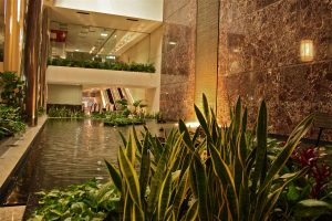 Koi ponds in businesses