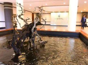 indoor pond installation