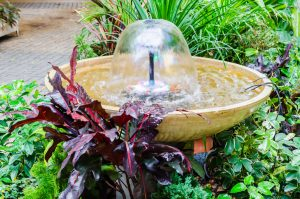 water features for home and office