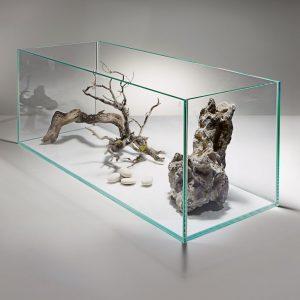 minimalist aquarium design