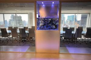 Aquarium Maintenance Services New York City