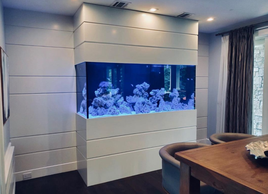 Fish Tank Maintenance Companies NY & NJ