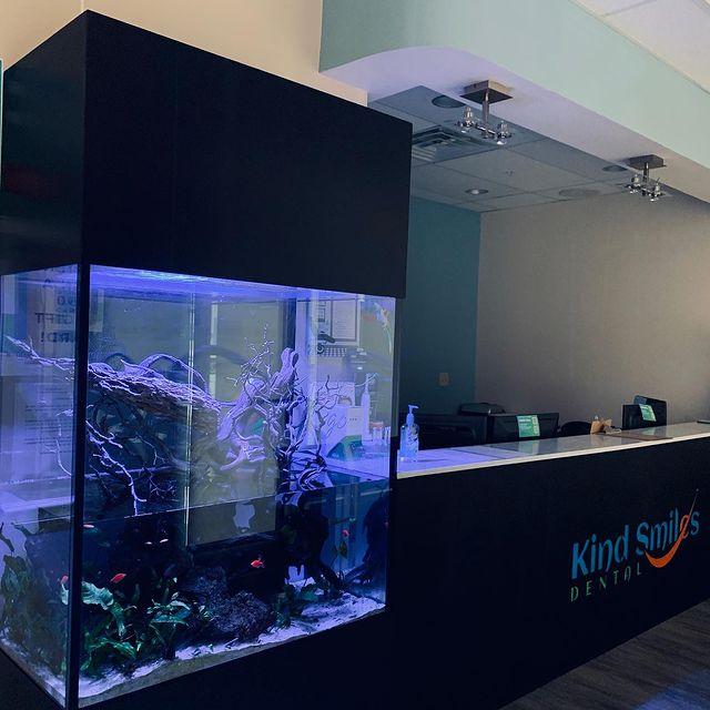 Aquarium Maintenance Services NYC