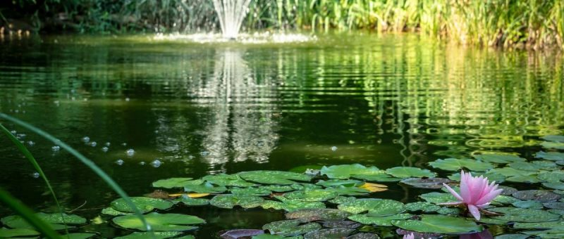 pond installments New York